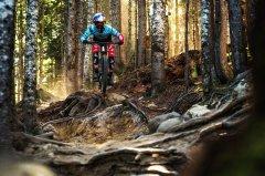 MTB-Downhill