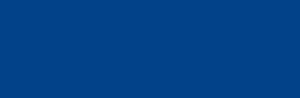 schwalbe logo standard